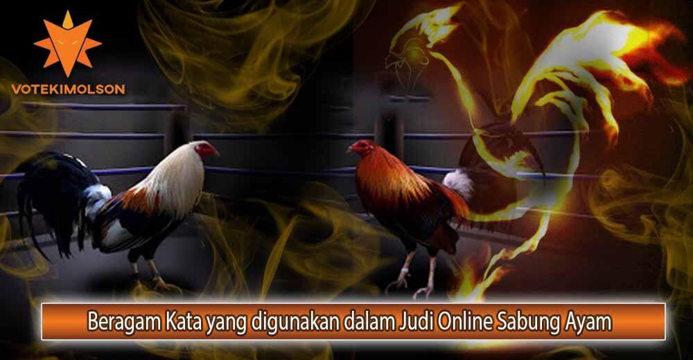 Beragam Kata yang digunakan dalam Judi Online Sabung Ayam